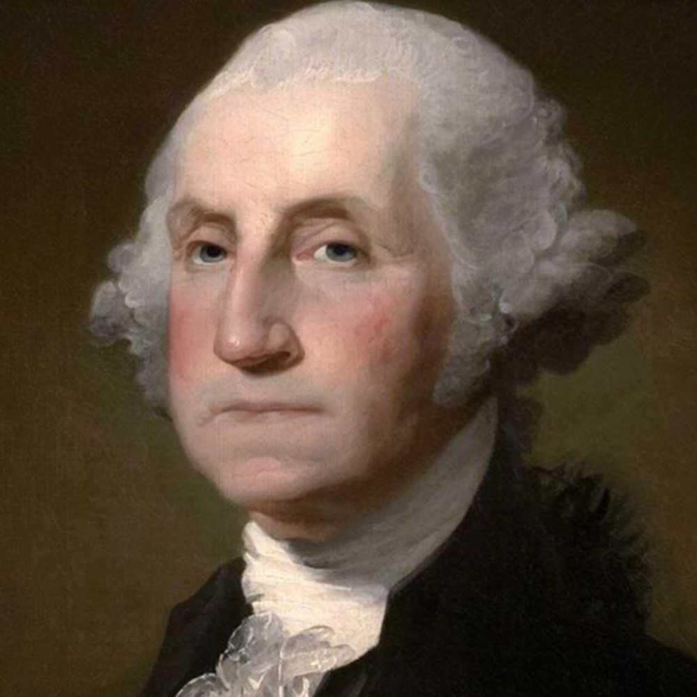 SwashVillage   Biografia di George Washington